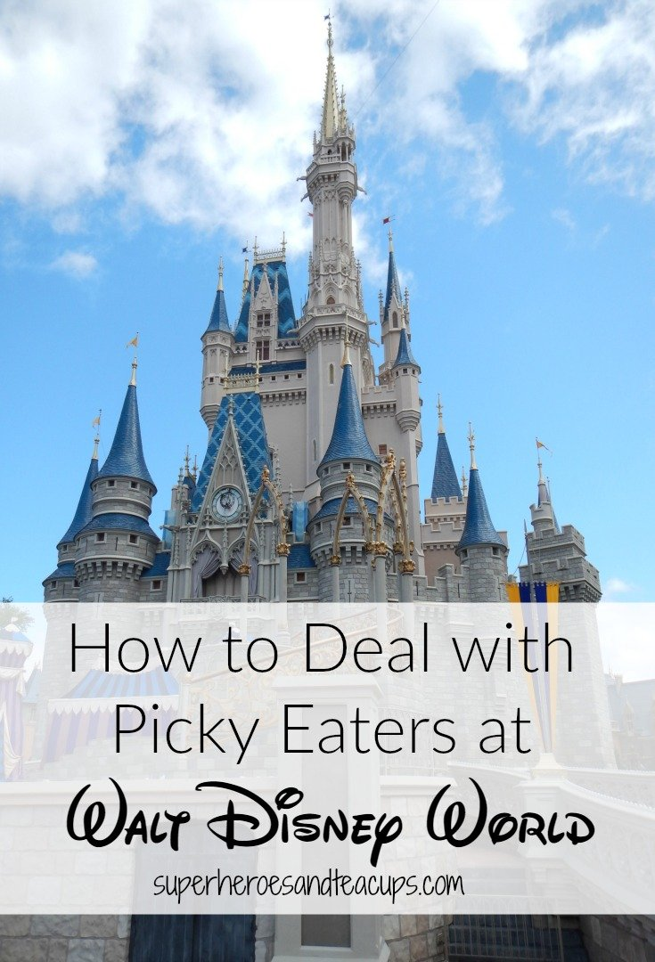 How to Deal with Picky Eaters at Walt Disney World