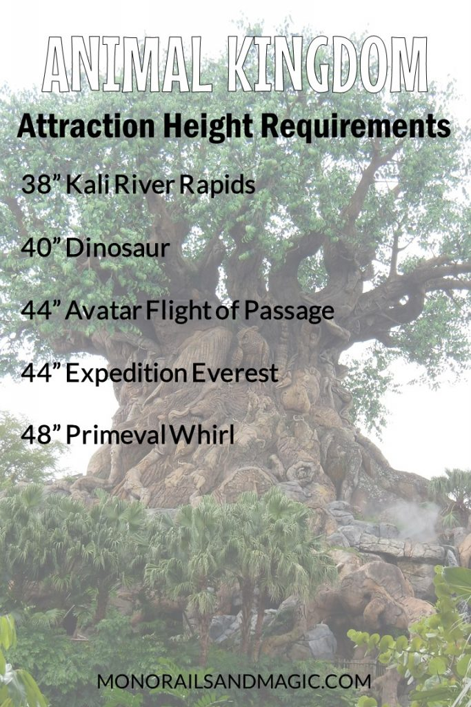 Walt Disney World Attraction Height Requirements for Animal Kingdom